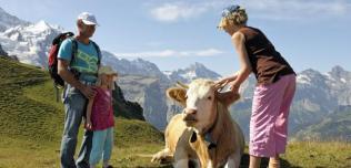 Szwajcaria: Rodzinne wakacje w Haslital i Jungfrau