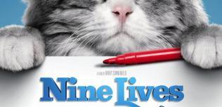 Nine lives Jak zostać kotem