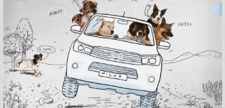 Kalendarz Korabki Toyota