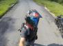 kot bloger motocykl