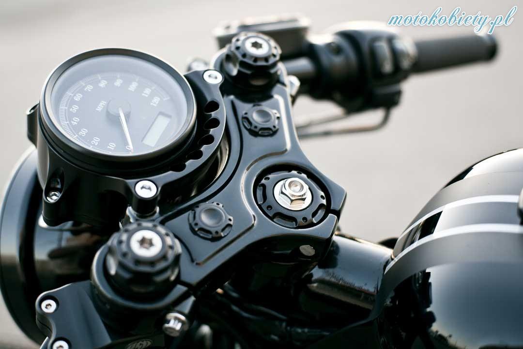 H-D Sportster od Roland Sands