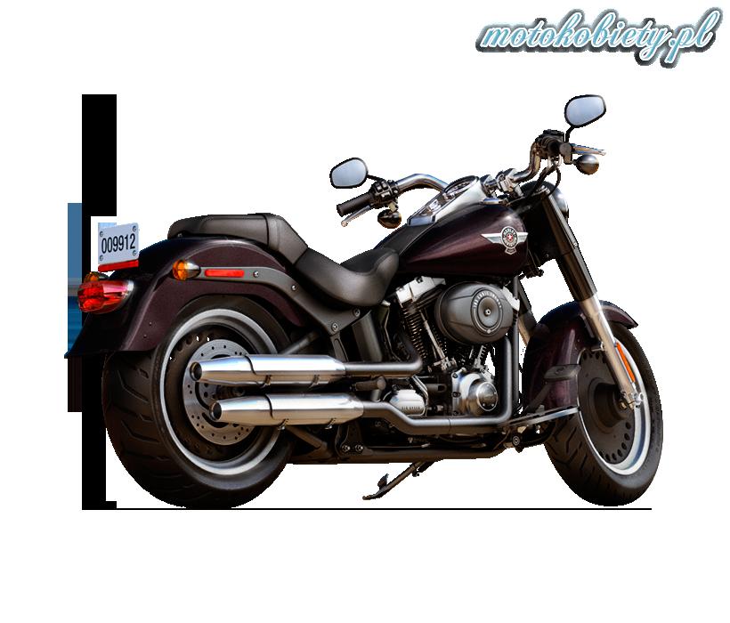 2014 Harley-Davidson Softail Fat Boy Special FLSTFB