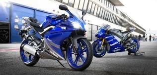 Yamaha YZF-R125 RM2013